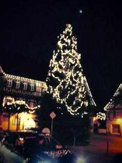 Weihnachtsbaum 2014 am Marktplatz